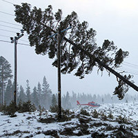 """Hektisk julhelg för elnätbolagen när stormen """"Dagmar"""" slog till"""
