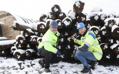 Stolpar med nytt, miljöanpassat träskydd används vid elnätsunderhåll på Gotland