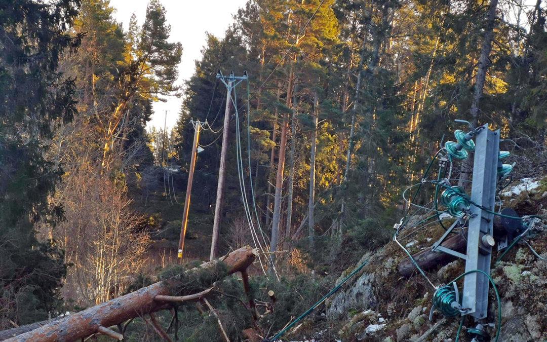 Återuppbyggnaden av elnätet i Roslagen efter stormen Alfrida